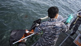 Hari ke-5 Evakuasi 17 Kapal Kalbar: 80 Selamat, 15 Meninggal