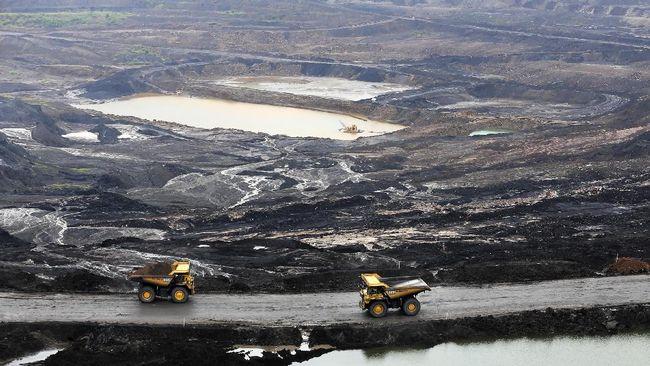 Alat-alat berat dioperasikan di pertambangan Bukit Asam yang merupakan salah satu area tambang terbuka (open-pit mining) batu bara terbesar PT Bukit Asam Tbk. di Tanjung Enim, Lawang Kidul, Muara Enim, Sumatra Selatan, Sabtu (5/11). PT Bukit Asam Tbk (PTBA) berencana menaikan produksi dari 25,75 juta ton menjadi 32,18 juta ton atau sebesar 25 persen pada 2017. ANTARA FOTO/Nova Wahyudi/kye/16