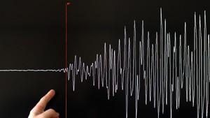 Peringatan Tsunami, Warga Selandia Baru Diminta Evakuasi