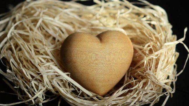 Dari lima bahasa cinta yang ada, sentuhan fisik jadi salah satu cara paling intim untuk menunjukkan cinta.