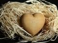 20 Ucapan Lain untuk Ungkapkan 'I Love You' saat Valentine