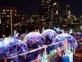 'Menyantap' Bintang dalam Igloo Plastik di Rooftop Bar