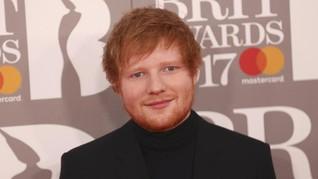 Mengenal Pescatarian, Pola Hidup yang Dijalankan Ed Sheeran
