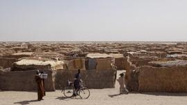 Enam Tentara Kamerun Tewas Dalam Serangan Boko Haram