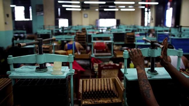 Cita rasa cerutu Kuba yang paling terkenal adalah cerutu Havana. Cerutu ini dianggap sebagai sebuah hasil karya seni yang punya kekhasan sendiri.