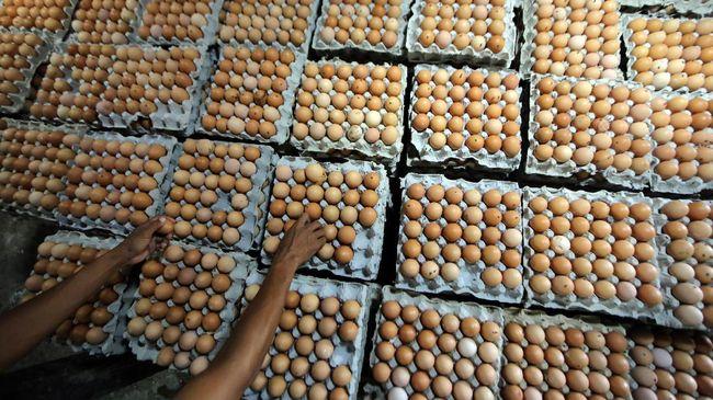 Aksi peternak ayam di Kabupaten Blitar, Jawa Timur, yang menggelar bagi-bagi telur dibubarkan aparat kepolisian, Selasa (28/9).