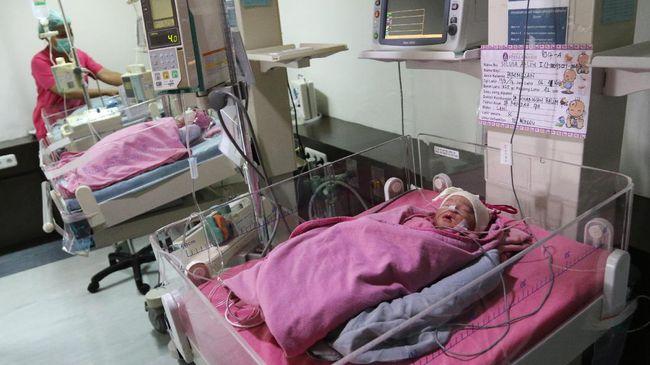 Perawat memeriksa kondisi dua dari empat bayi kembar yang lahir di RSIA Stella Maris, Medan, Sumatera Utara, Selasa (14/3). Bayi kembar empat, dua bayi laki-laki dan dua perempuan anak pasangan Zainedi Saputra dan Silvia Arlin yang mengikuti program kehamilan inseminasi tersebut, lahir dengan berat 1,6 kg, 1,5 kg, 1,6 kg dan 1,7 kg melalui operasi caesar. ANTARA FOTO/Irsan Mulyadi/aww/17.