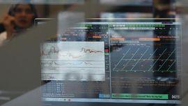 Beda Sekuritas dan Manajer Investasi