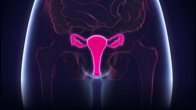 Australia bakal menjadi negara pertama di dunia yang bebas dari kanker serviks dengan tujuh kasus per 100 ribu wanita.