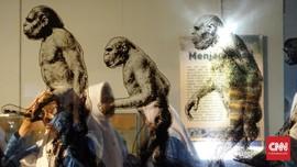 Indonesia Kehilangan Ratusan Gambar Prasejarah