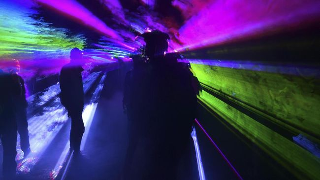 People are pictured during a laser party organized in a forest next to Bucharest May 19, 2017. Hundreds of ravers take part every year in