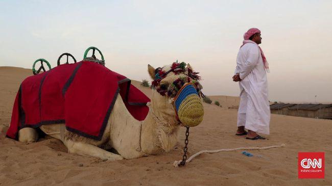 Dubai tak melulu gurun pasir. Ada banyak objek wisata kekinian yang bisa dijelajahi di sana, bahkan hanya dalam waktu semalaman.