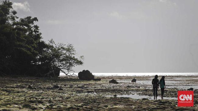 Pantai Plengkung atau Pantai G-Land berada di dalam Taman Nasional Alas Purwo, Banyuwangi.