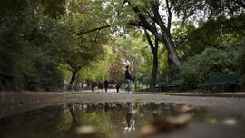 Sosok Misterius Buka Taman bagi Warga Paris yang Stres Corona