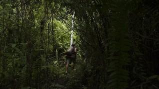 KLHK Klaim Omnibus Law Cegah Kriminalisasi Warga Hutan Adat