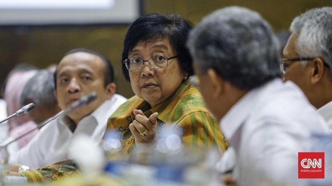 Menteri LHK Siti Nurbaya mengungkap 637 ribu hektare tanaman mangrove di 9 provinsi dalam keadaan kritis dan perlu direhabilitasi.