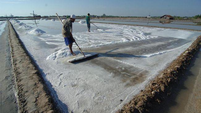 Jika permasalahan dasar kelangkaan garam tidak cepat diselesaikan, para petambak garam akan terus terpuruk setiap musim kemarau basah terjadi di Indonesia