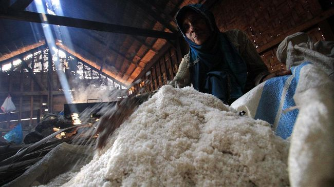Selisih Harga Garam Petambak dan Impor Cuma 10 Persen