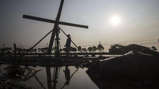 Sebanyak 1.200 pekerja industri di wilayah Batam, Kepulauan Riau, terpaksa dirumahkan karena pengurangan produksi akibat kekurangan pasokan garam.