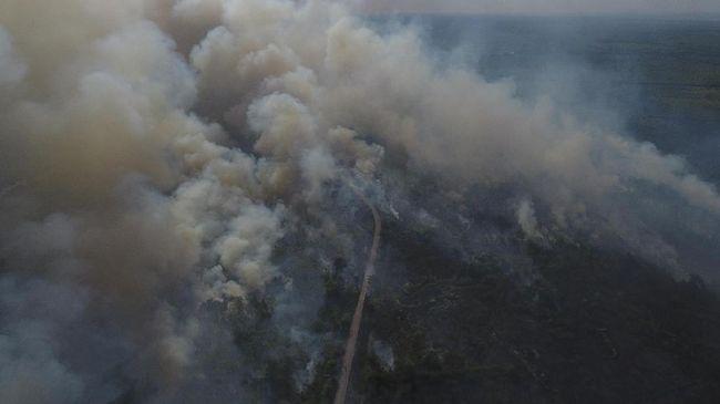 Nepal mengalami kebakaran lahan terburuk dalam hampir sedekade terakhir.