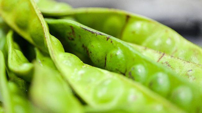 Petai bisa dibilang bernasib sama seperti durian. Bagi sebagian orang, rasanya enak, namun tak tahan akan baunya. Tapi kiprah petai ternyata sudah mendunia.
