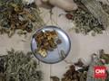 Youtube Hapus Konten Obat Tradisional Bisa Sembuhkan Corona