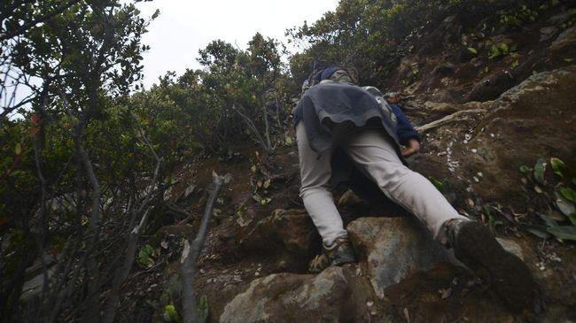 Seorang warga asal Palangka Raya, ditemukan selamat setelah dinyatakan hilang sepekan di Gunung Muro.