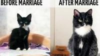 Perubahan dari segi fisik ketika sebelum dan sesudah menikah. Bener begini nggak, Bun?