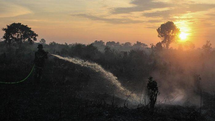 Lereng Taman Nasional Gunung Ciremai Kuningan Terbakar
