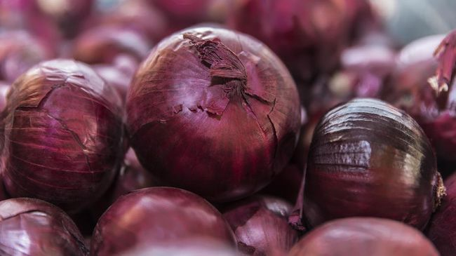Pengamat Pertanian Dwi Andreas Santosa meminta pemerintah mewaspadai importasi bawang merah 'berkedok' bombai karena akan merusak harga dan pasar.