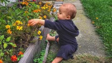 Foto: Begini Jadinya Kalau si Kecil Berkebun
