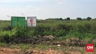 Lokasi Program Cetak Sawah Jokowi Bisa Rusak Ekosistem