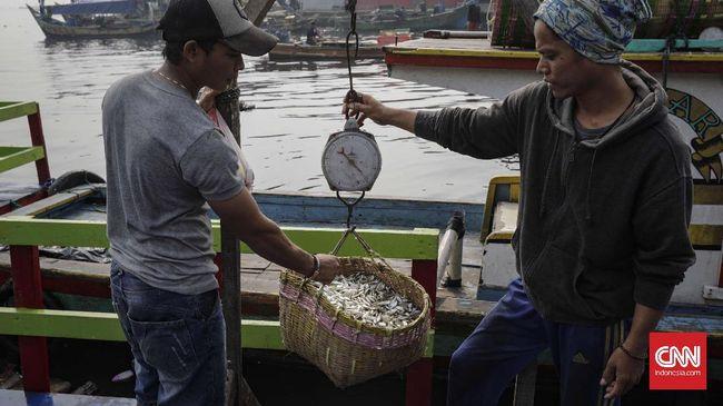 Nelayan dapat mengajukan Kredit Usaha Rakyat (KUR) mikro tanpa agunan dengan plafon kredit maksimal Rp25 juta.
