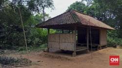 Memimpikan Setruman Listrik di Tengah Pusaran Hutan Jati