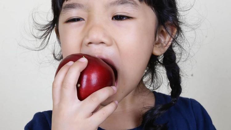 Buah-buahan penting diberi ke anak. Terutama bagi anak usia balita, lima buah ini dianjurkan banget untuk dikonsumsi.