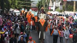 Delapan Gajah Jadi Bintang di Parade Lampung Krakatau 2017