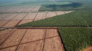 KPA Ungkap Konflik Agraria di Jambi 14 Tahun Silam