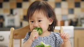 Asal-usul Mitos 'Makan Tak Habis Ayam Akan Mati'