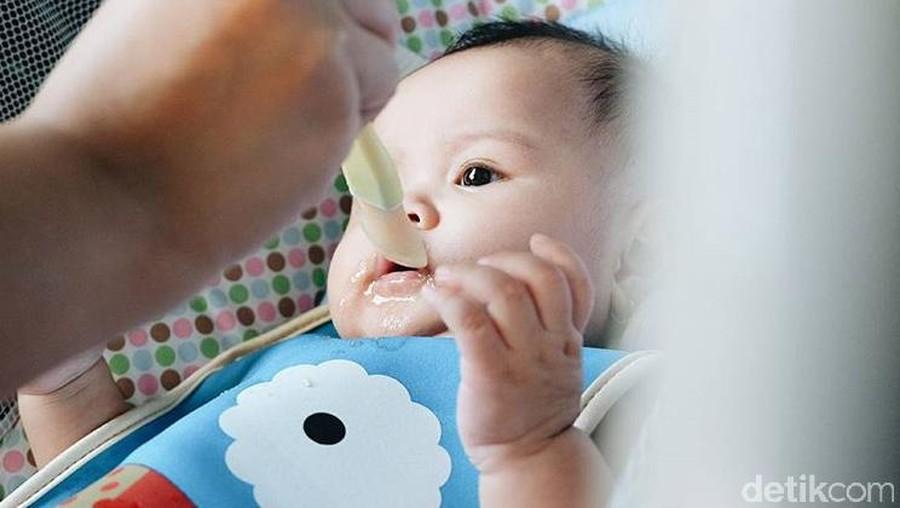 Pentingnya Protein Hewani dalam Menu Makanan Anak