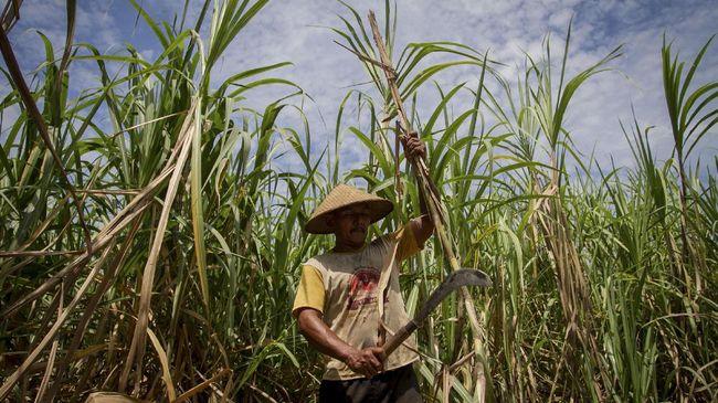 DPR RI mengusulkan pabrik gula milik RNI agar dilebur ke dalam holding gula BUMN yang dikepalai oleh PT Perkebunan Nusantara (PTPN) III yakni SugarCo.