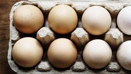 Wabah Salmonella, Peternakan AS Tarik 200 Juta Butir Telur