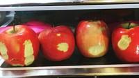 <p>Si kecil pernah begini, Bun? Mencicipi semua buah di kulkas, hi hi hi. (Foto: Instagram @averageparentproblem)</p>