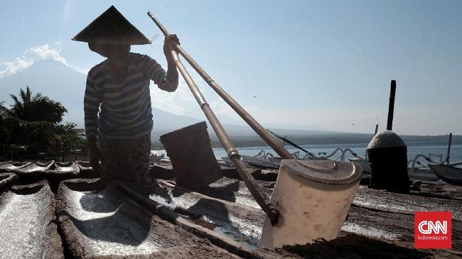 Pemerintah menerbitkan izin rekomendasi impor garam industri sebanyak 676 ribu ton dari 1,33 juta ton kebutuhan yang belum terpenuhi. Berikut ini alasannya.