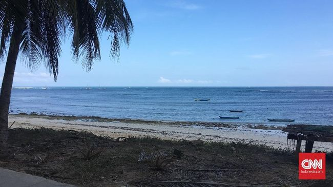 Wagub NTT mengatakan perihal laopran temuan pulau baru di wilayah provinsi itu pascabencana akibat siklon tropis seroja masih diteliti lebih lanjut.
