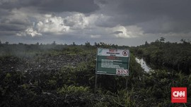 Kemenhan Dorong Food Estate Kalteng, LSM Sebut Janji Kosong