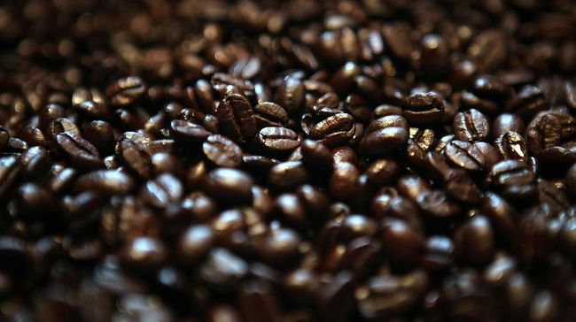 Selain robusta dan arabika, ada dua jenis kopi lain yang tak kalah nikmat, yaitu liberika dan ekselsa yang hadir dengan berbagai karakteristik uniknya.