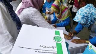 Ke DPR, MUI Soroti Aturan Sertifikasi Halal di RUU Ciptaker