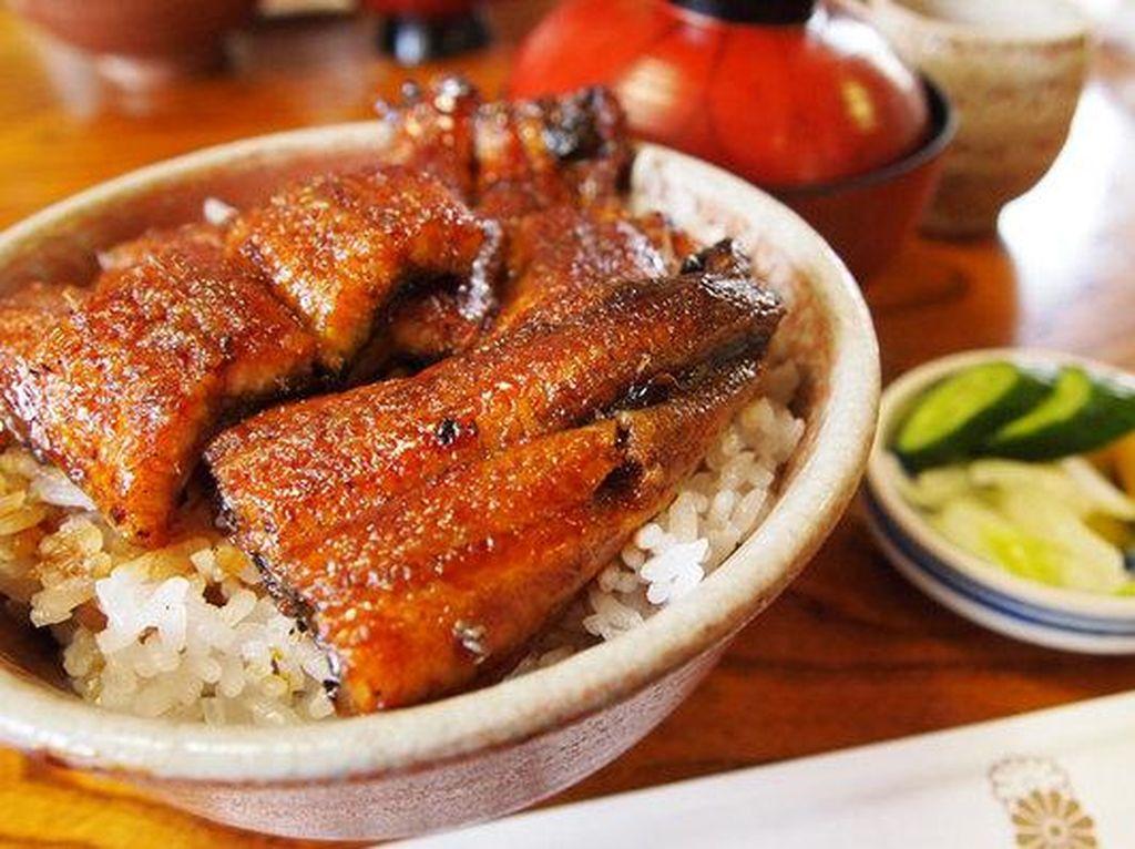 Belut (unagi) enak dinikmati bersama nasi. Biasanya diberi saus kental yang gurih.