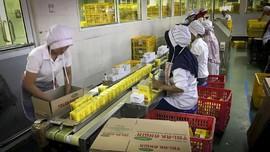 Racikan Jamu untuk Pertahanan Tubuh Kala Pandemi