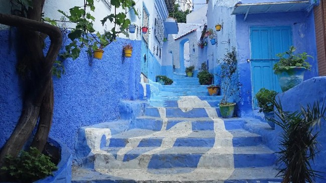 Chefchaouen ialah kota di utara Maroko yang terkenal dengan bangunan berwarna birunya.